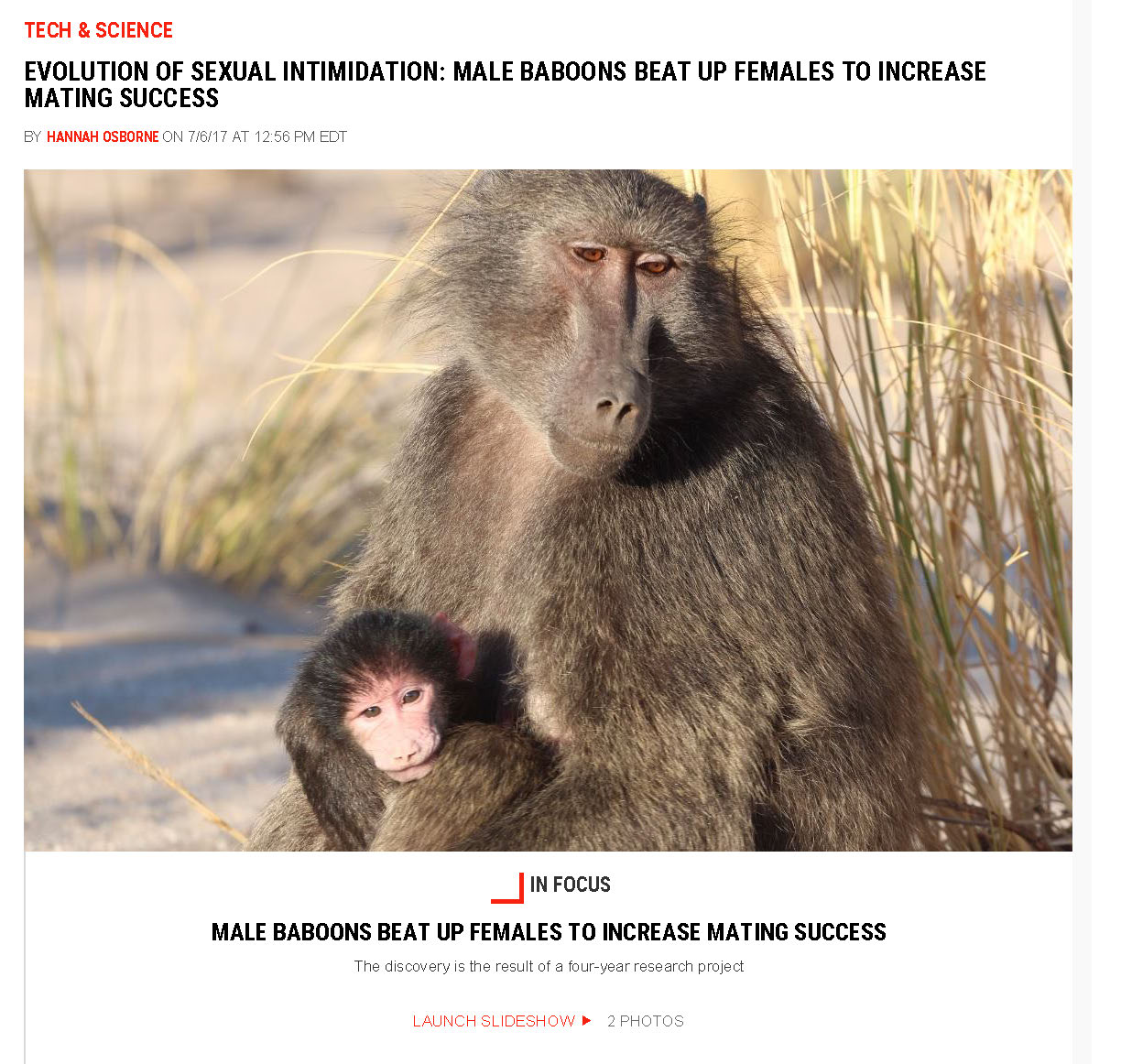 Image de l'article Evolution of Sexual Intimidation: Male Baboons Beat up Females to Increase Mating Success